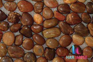 1_0005_Chocolate-Natural-Ri